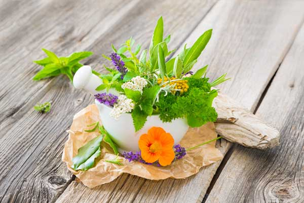 Kochkurs Die Aromen des Frühlings